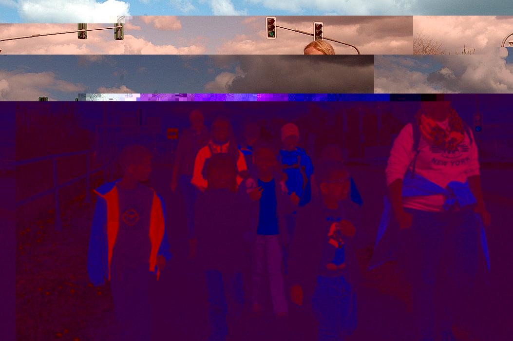 OFP_2014_13