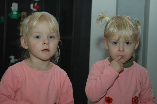 zwillinge-00046