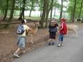 wildpark015