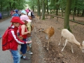 wildpark016
