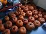 24.10.2013 Herbstferienprogramm - Kürbismännchen schnitzen